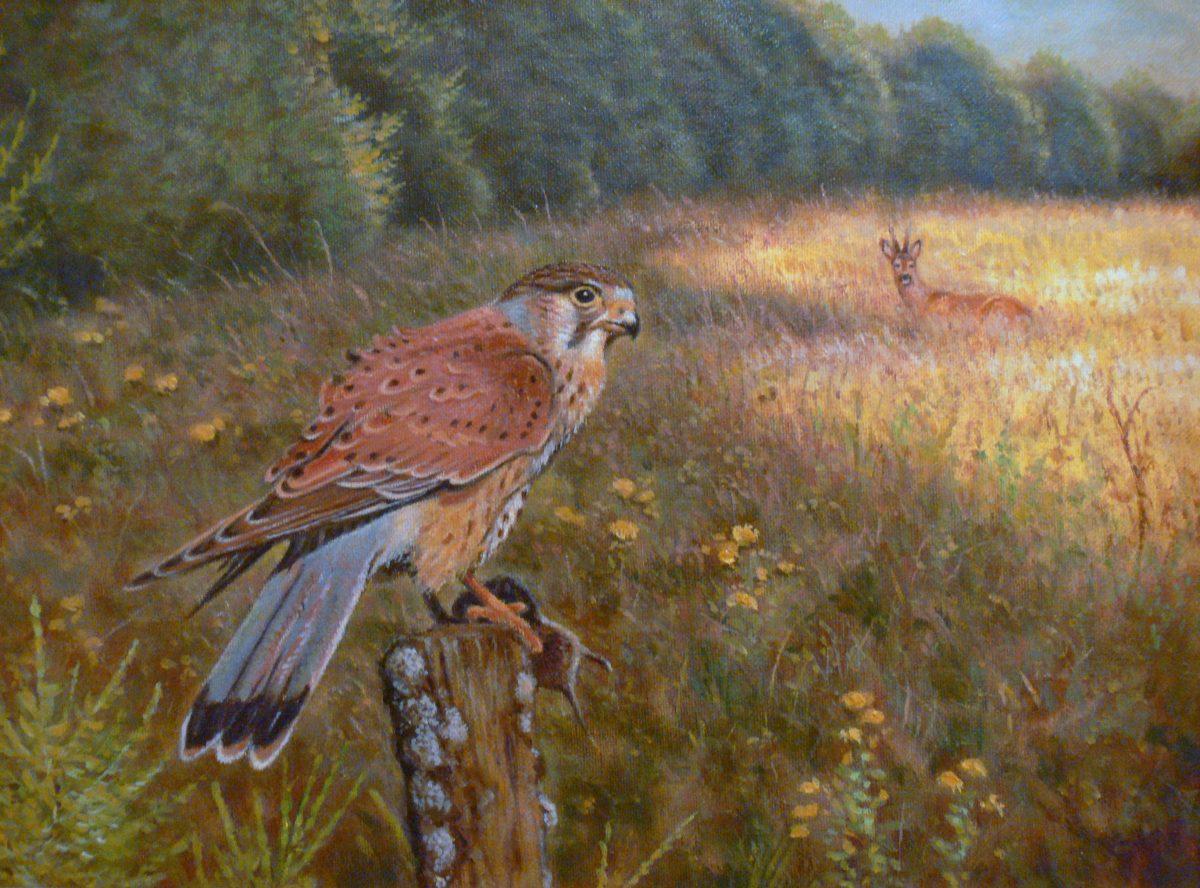 Jagdmaler Thomas Bold